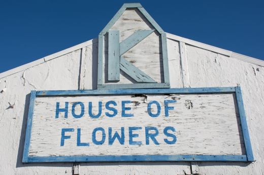 K House of Flowers. 5249 N Milwaukee Ave.